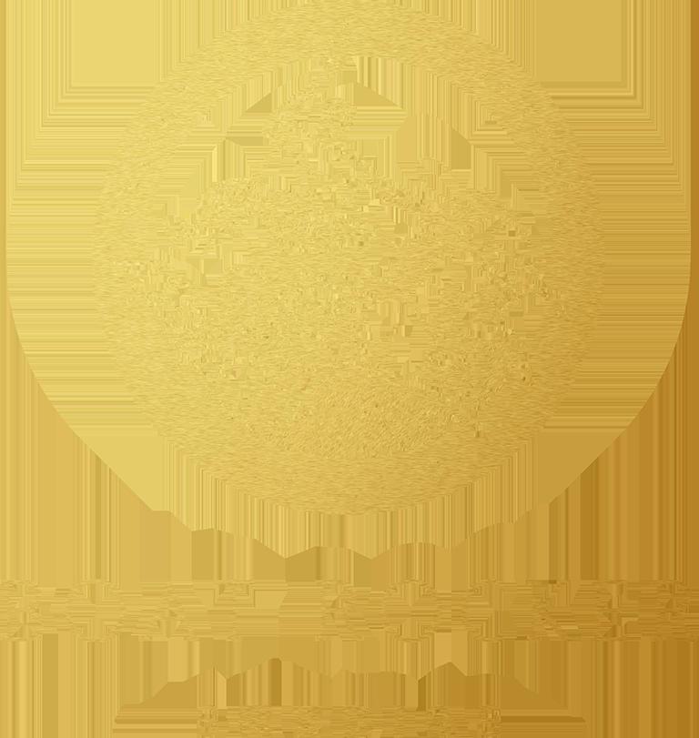 Boat Rocker Studios